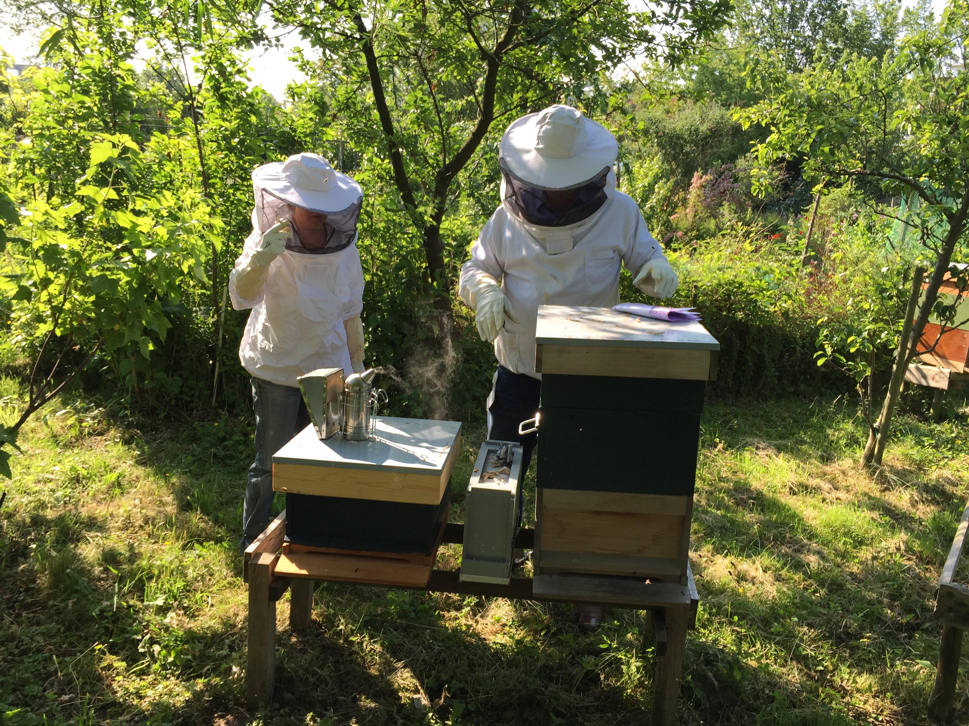 beekeepers-985084